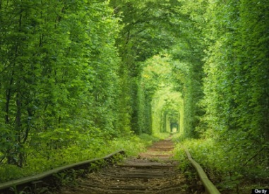 Tunnel-of-Love-in-Kleven-Ukraine-a-Fairytale-Train-Track.jpg