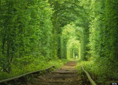 Tunnel-of-Love-in-Kleven-Ukraine-a-Fairytale-Train-Track.jpg